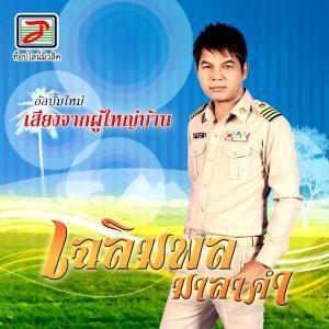 Listen to ก้อยน้ำมันหมู song with lyrics from เฉลิมพล มาลาคำ