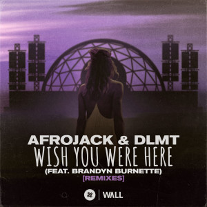 Album Wish You Were Here (feat. Brandyn Burnette) [Remixes] from DLMT