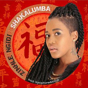 Album Shakalumba Single from Zinhle Ngidi