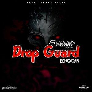 Album Drop Guard from Echo Dan