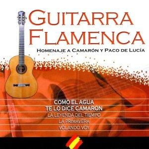 "The Spanish Guitar的專輯Nº 5 ""Your Songs On Spanish Guitar"" (Homenaje Flamenco A ""Camarón De La Isla"")"