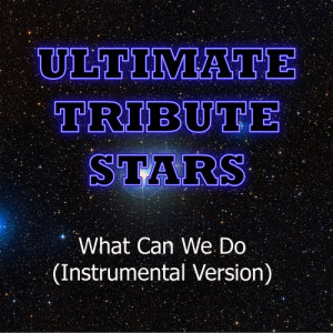 Ultimate Tribute Stars的專輯Tiësto feat. Anastacia - What Can We Do (Instrumental Version)