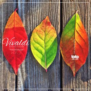 Lullaby & Prenatal Band的專輯Vivaldi Concerto & Sonata for Guitar Prenatal Music, Vol. 7 (Relaxing Music,Classical Lullaby,Prenatal Care,Prenatal Music,Pregnant Woman,Baby Sleep Music,Pregnancy Music)