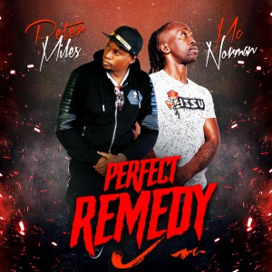 Album Perfect Remedy from Mc Norman