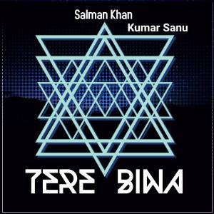 Salman Khan的專輯Tere Bina