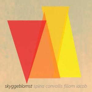Album Spina Convallis Filiam Iacob from Skyggeblomst