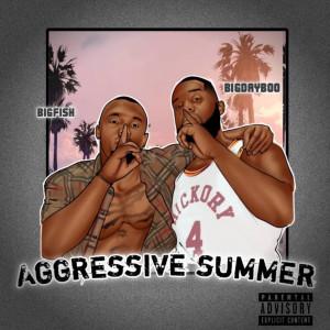 Album Aggressive Summer (Explicit) from BigFish