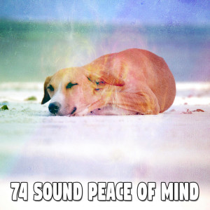 Trouble Sleeping Music Universe的專輯74 Sound Peace of Mind