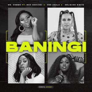 Album Baningi from Sho Madjozi