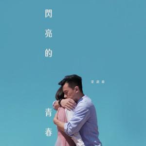 梁釗峰的專輯閃亮的青春