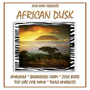 Listen to Ngafa song with lyrics from Afri Afro