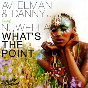 Listen to What's The Point (feat. Nuwella) [Radio Edit] song with lyrics from Avi Elman
