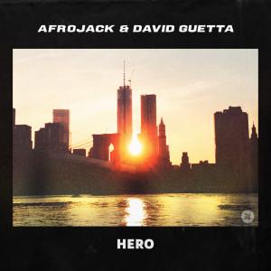 David Guetta的專輯Hero