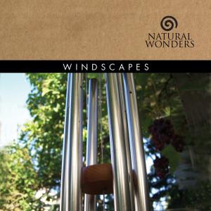 Windscapes 2006 David Arkenstone