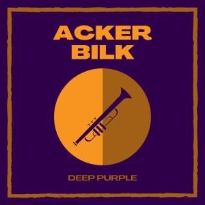 比爾克的專輯Deep Purple