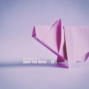 Album Have You Never - EP from Mamo Dj