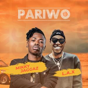 Album Pariwo from Mikky Jaggaz
