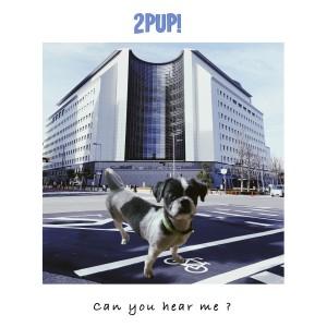 อัลบัม Can you hear me ? ศิลปิน 2PUP!