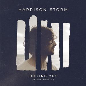 Album Feeling You (BLEM Remix) from Harrison Storm