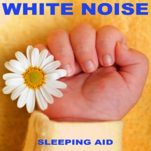 Snooze Tunes for Babies的專輯White Noise Sleeping Aid