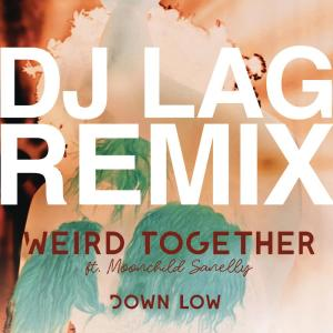 Album Down Low (DJ Lag Remix Extended) from Weird Together
