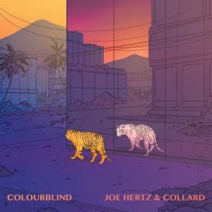 Album Colourblind from Collard