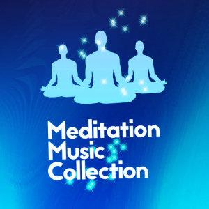 Meditation的專輯Meditation Music Collection