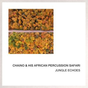 Album Jungle Echoes from Chaino & His African Percussion Safari