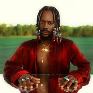 Album Afro Pop, Vol. 1 from Adekunle Gold