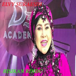 Album Lagu Lagu Elvy Sukaesih from Elvy Sukaesih