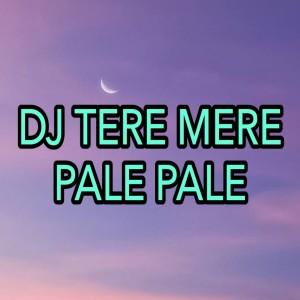 DJ Tere Mere - Pale Pale dari Dj Saputra