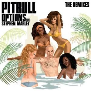收聽Pitbull的Options (DJ Noodles Remix)歌詞歌曲