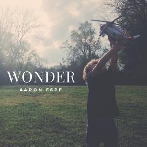 Album Wonder from Aaron Espe