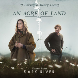 Album An Acre Of Land from PJ Harvey
