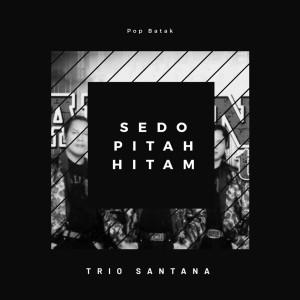 Seto Pitah Hitam dari Trio Santana