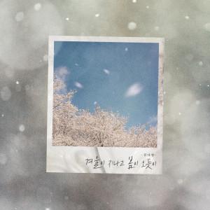 金娜英的專輯After The Winter Comes The Spring