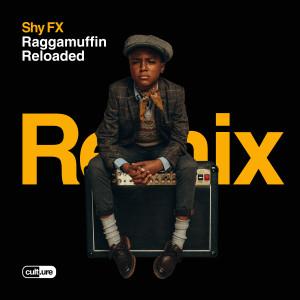Album Bye Bye Bye (feat. Chronixx) [S.P.Y Remix] from Shy Fx