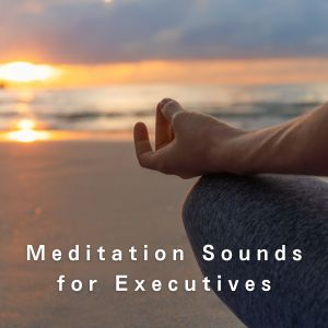 Album Meditation Sounds for Executives from Relaxing BGM Project