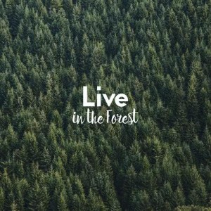 Live in the Forest