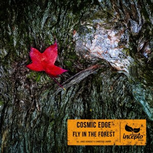 Album Fly in the Forest from Cosmic Edge