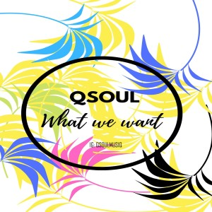 Album What We Want from Qsoul