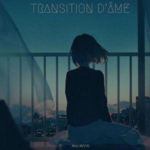 Album Transition d'âme (Explicit) from Maj
