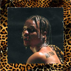 Album JAGUAR (Explicit) from Supa Bwe