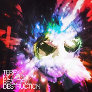 Album Beautiful Destruction from Terry McDermott