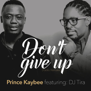 Album Don't Give Up from Prince Kaybee