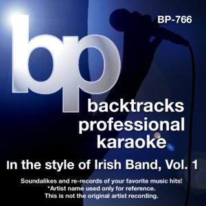 Album Karaoke - Sing Irish Hits, Vol. 1 from Backtrack Professional Karaoke Band