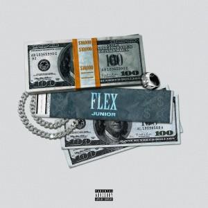 Album Flex (Explicit) from Junior