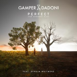 Album Perfect (For Somebody Else) [feat. Dewain Whitmore] from Gamper & Dadoni