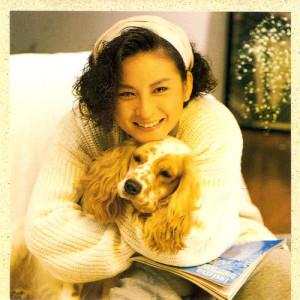 收聽陳淑樺的孤單歌詞歌曲