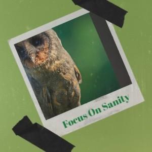 Focus on Sanity